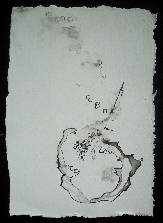 Cellen 11